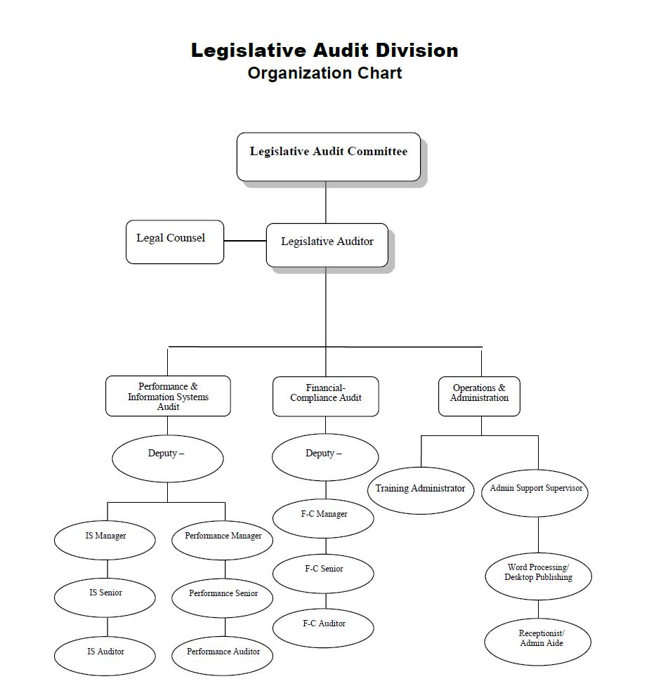 Legislative Audit Division Organization Chart